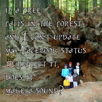 Some Reflections on Very Big Trees and an Involuntary Internet Fast
