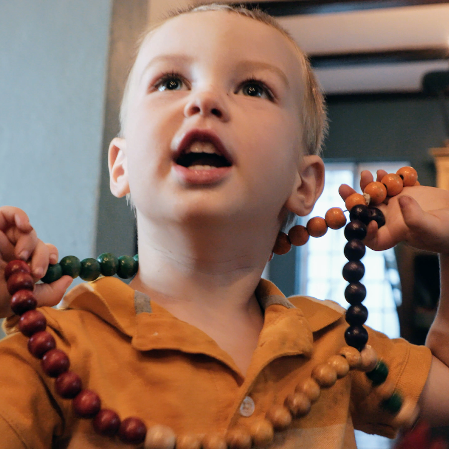 The Family Rosary: Why is it SO Hard?