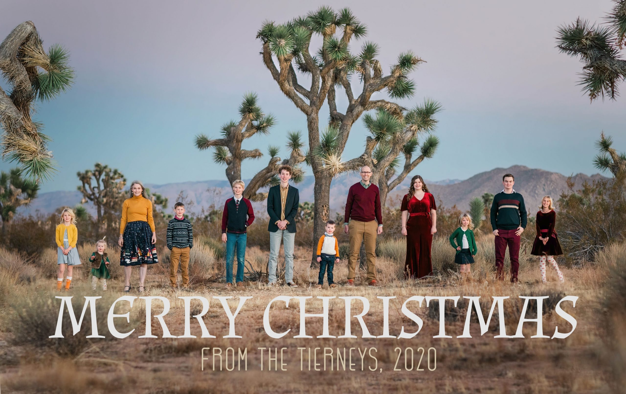 Merry Christmas from the Tierneys, 2020