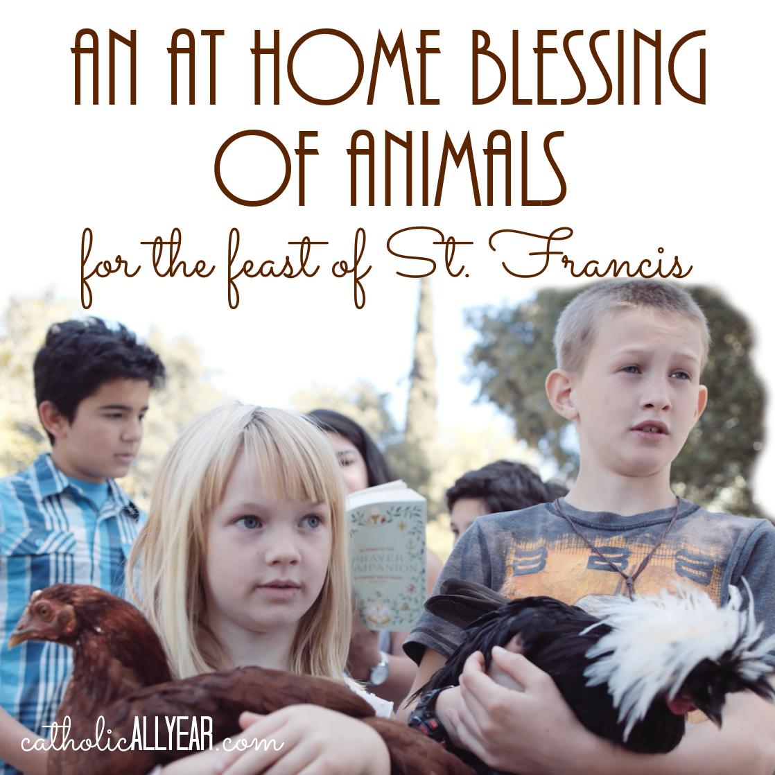An At Home Blessing of Animals for the Feast of Saint Francis